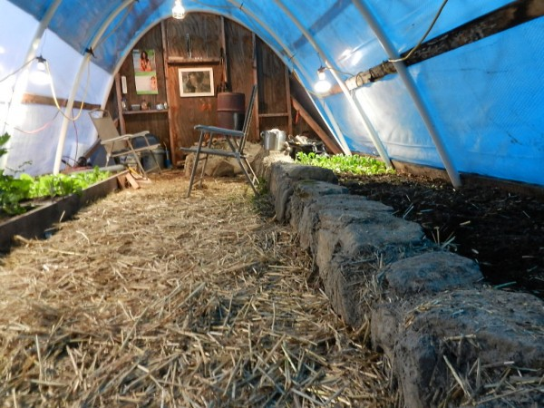 An underground Greenhouse for £200.